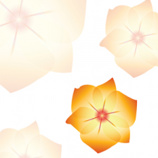 Логотип Illustrator (Illustrator).