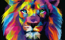 Illustrations | Illustrator| Lion