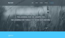 Сайт-портфолио, верстка выполнена с применением те