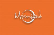 вариант лого чешского бренда одежды
