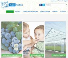 "Корпоративный сайт ООО ""Berry Partner"""