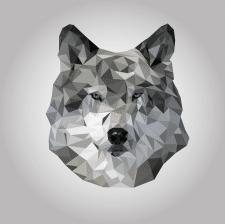 Полигональная иллюстрация волка