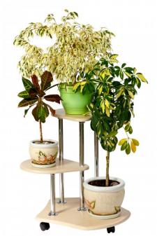 Подставка для цветов (дуб)