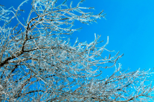 Зима 1