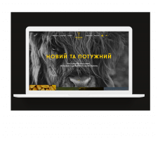 Сайт для крупнейших дистрибьюторов в Украине семян
