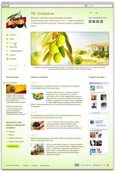 Разработка дизайна и верстка сайта испанской торго