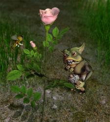 Эта, роза