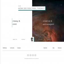 Design for Ex Sangelous online store
