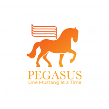 "Logo concept ""Pegasus"""