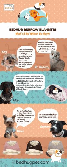 Инфографика для Pinterest