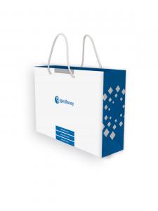 Презентационный пакет для компании Webmoney. Вид 2.