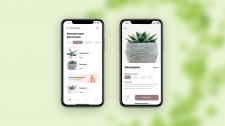 Дизайн мобильного приложения (цветы)