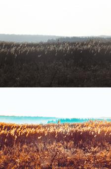 Цветокоррекция
