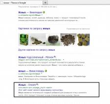 Пример работы по продвижению сайта