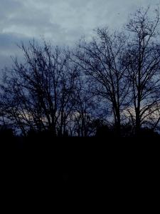 Обработка фото пейзажа