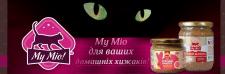 Баннер для главной страницы сайта