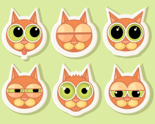 Cats emoticon