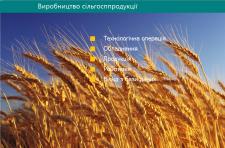 Виробництво сільгосппродукції