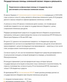 Льготы и господдержка для пчеловодов в Украине