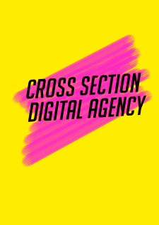 Cross Section Logo
