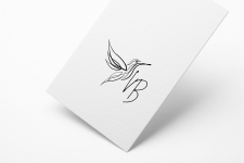 logo_kolibri