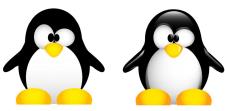 Милый пингвинчик