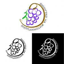 Виноград на Житомирщине
