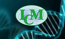 SEO Продвижение Медицинской клиники ICMED