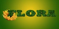 FLORA логотип для семечкового распространителя
