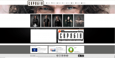 Разработка дизайна и двжка сайта