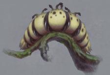 гусеница 1