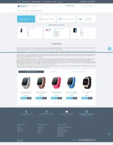 Создание интернет-магазина Чехлов и аксессуаров