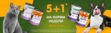 Баннер  для магазина  bestpet.com.ua