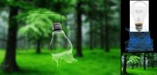 lamp&water