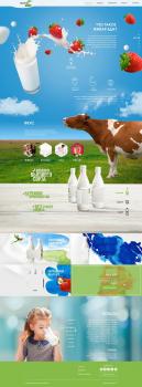 Дизайн сайта для производителя молочной продукции