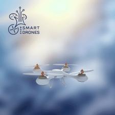 Логотип Smart Drons