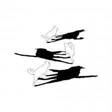 Иллюстрация. Коты. Тени.