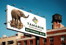 Борд Тамарин