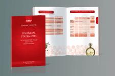 Финансовый отчет для UKRAVIT