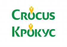 Конкурсный логотип для флористической компании