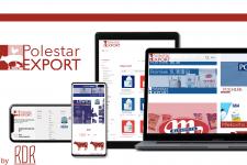 Создание айдентики и сайта для Polestar-Export