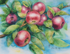 Картина Яблоки