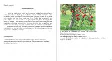 Obstbaumabschnitt - 2 варианта