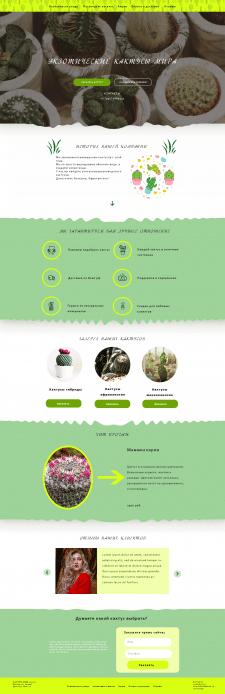 Дизайна лендинга интернет-магазина кактусов