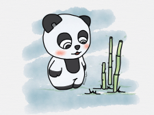 Иллюстрация персонажа - панды