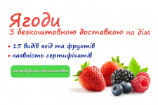 Баннер-ягоды