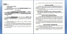Перевод брачного договора часть 1