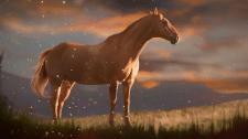 Лошадь после дождя