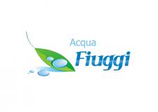 Логотип для минеральной природной воды \ Италия \ 2008 год