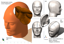 Голова (Реверс-Инжиниринг)